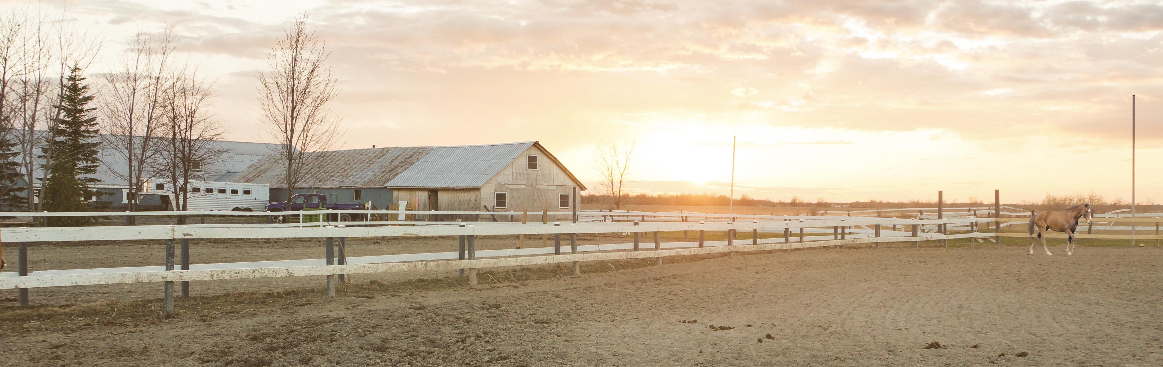 Barns and Corral at sunrise - Horse Properties for Sale, Arizona Horse Property, East Valley, Gilbert Horse Property for Sale - Photo by jon-phillips on Unsplash