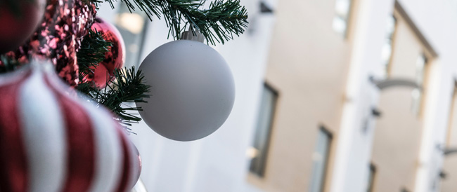 Branch with Christmas decorations in front of home - Christmas, house, listing during the holidays - Bill Salvatore, Arizona Elite Properties 602-999-0952 - Tips for Home Sellers
