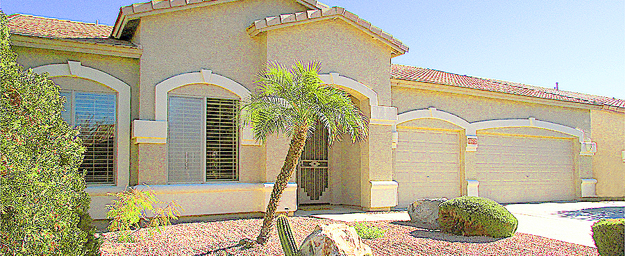 Single level home with 3-car garage, palm trees and cactus in front yard - 1205 S Sandstone St, Gilbert AZ - 3 Bedroom, 2 Bath Home for Sale in Western Skies Golf Community - Bill Salvatore, Arizona Elite Properties 602-999-0952-Arizona Real Estate